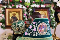 Преподобного Сергия (37)