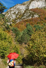 Colourful autumnal hills above Canfranc