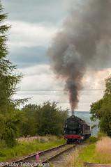20170805-_CNH6803.jpg (bigbarney130) Tags: ipstonessummit preserved staffordshire churnetvalleyrailway nikond300 s160 historictransport train preservedsteam heritage 5197 usatc cvr steam