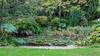 Lily Pond (PhredKH) Tags: capelmanor northlondon urbanparks gardens pond lily lilypond photosbyphredkh outdoorphotography green greengrass trees autumn canonphotography canoneos canoneos5dmarkiii 50mm ef50mmf18stm water splendid forest park graden wood garden grass road