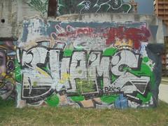 183 (en-ri) Tags: svame boc bocs crew argento nero verde parco dora torino wall muro graffiti writing