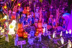 2017.10.23 DC at Night, Washington, DC USA 9809