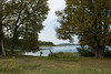 A place for resting (Journeyman of Words) Tags: 2017mecklenburgvorpommern autumn deutschland mecklenburgvorpommern müritz plants water trees mecklenburgwestpomerania germany seenplatte waren müritznationalpark lake shore calm peaceful