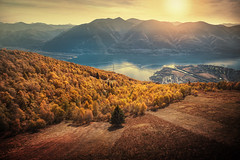 above Locarno (Chrisnaton) Tags: lagomaggiore switzerland ticino ascona locarno cardada alpine mountains eveningmood eveninglight eveningcolors sunset autumncolors autumnforest