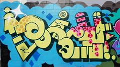 h20e... (colourourcity) Tags: streetart streetartnow streetartaustralia graffiti burncity colourourcity nofilters awesome original h20e dizzyhizzy fly flies neon burner