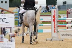 _MG_6155 (dreiwn) Tags: ridingarena reitturnier reiten reitplatz reitverein reitsport ridingclub equestrian showjumping springreiten horse horseback horseriding horseshow pferdesport pferd pony pferde tamronsp70200f28divcusd