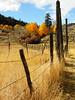 Fenceline (johnwise60) Tags: fence fall autumn fenceline ellemeham okanogancounty washington ranch colors
