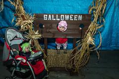 Halloween-2017 (1 of 173)