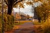 Vikens walkway (Shantasphotos) Tags: walkway autumn season town city ways trees road cars trafic architecture landscapes