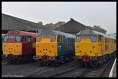 No 31465 No 31466 No 31459 15th Oct 2017 NVR Class 31's @ 60 Gala (Ian Sharman 1963) Tags: no 31465 15th oct 2017 nvr class 31s 60 gala station diesel engine railway rail railways train trains loco locomotive passenger heritage line nene valley wansford peterborough nv yarwell junction 31466 network 31459
