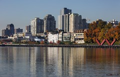 """The New """"W"""" (Clayton Perry Photoworks) Tags: vancouver bc canada fall autumn explorebc explorecanada surrey trees colours leaves skyline newwestminster brownsvillebarbeach fraserriver reflections buildings"""