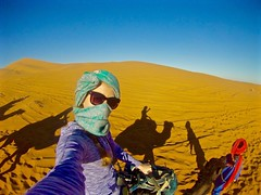 Morocco camel  tours (mohamedouassouibrahim) Tags: tours morocco