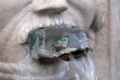 DSCF4157.jpg (Darren and Brad) Tags: brescia italy italian frogmouth fountain italia