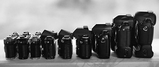The Ascent of Nikon (Film)