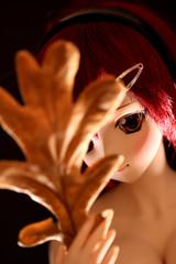 Leaves' Eye (Mimiru Kamachi) Tags: ドルフィードリーム bjd ddh09 canon momo おっぱい oppai かまち volks canoneos600d dollfie portrait depthoffield model canonef100mmf28lmacroisusm ミミル doll dollfiedream lowkey dddy cute kawaii ミミルかまち boobs autumn leaves mimirukamachi mimiru