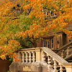 Autumn steps in? thumbnail