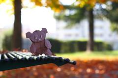 Mr. Teddy in autumn ( origami ) (Adri 79) Tags: origami paper canon7dmarkii canon50mmf18 adrianodavanzo didierpiguel