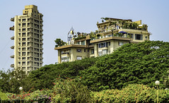 Mumbai's other side (Tony Tomlin) Tags: mumbai india bombay apartments trees