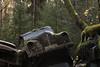 116/17  - hoffnungslos - (mariburg) Tags: rotten marode alt old rostig rustycars canoneos6d canonef100mmf28lmacroisusm