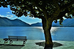 wish you were here.... (Andrea-Enrico) Tags: lagomaggiore ascona lacmajeur