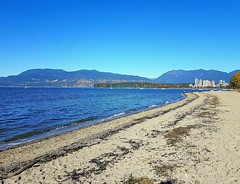 The North Shore mountains (walneylad) Tags: kitsilanobeach kitsilano haddenpark kitsilanobeachpark westend vancouver britishcolumbia canada october fall autumn colour color beach park parkland urbanpark pacificocean englishbay ocean sea water sand driftwood rocks waves whitecaps bluesky mountains trees leaves branches green yellow brown blue white nature scenery view cityview skyline city