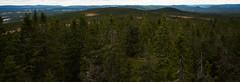 Granberget 2 (Vildmarcus) Tags: värmland sweden sverige skog woods landscape scenery nikon d610 vildmarcus marcus ilberg torsby sysslebäck urskog gammelskog