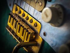 Macro Mondays: Member's Choice - Musical Instruments (davYd&s4rah) Tags: makro monday macromondays memberschoicemusicalinstruments guitar olympus