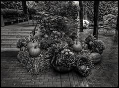 Halloween in NYC (Leguman vs the Blender) Tags: pod51 nyc manhattan midtown newyork usa bw