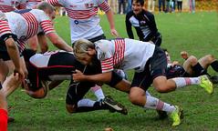 AZ0337_R.Varadi_R.Varadi (Robi33) Tags: action ball ballsports championship ei field game rugby power match fight play sports switzerland deutschland alpencup referees team viewers