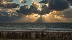 the beach today (5nov17) (robvanderwaal) Tags: zonnestraal sunbeams nederland 2017 rvdwaal clouds sea netherlands robvanderwaalphotographycom beach zonnestralen lucht strand cloud sunray sunrays sky sunbeam skyscape wolk wolken zee northsea bui shower