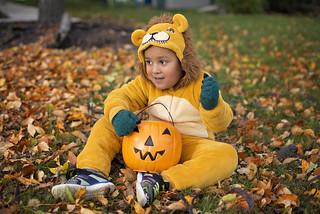 Halloween+Autumn= Beautiful Colors