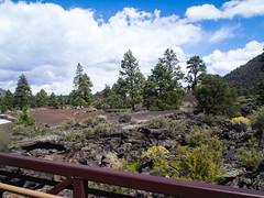 567-14-P9141263 (vgwells) Tags: sedona arizona grand canyon national park scottsdale montezuma castle jerome verde railroad sunset crater wupatki