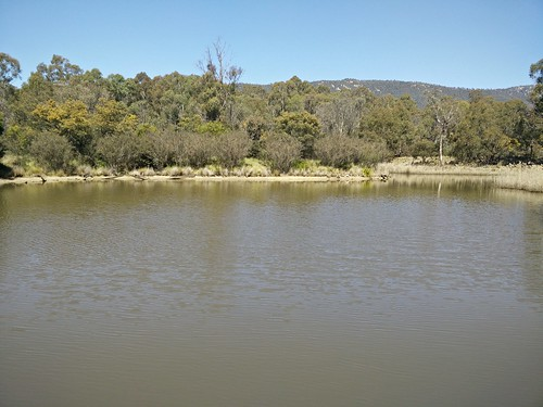 The Sanctuary at Tidbinbilla Nature Reserve