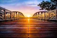 Footbridge Over Cottonwood Creek (brian.pipe) Tags: nikon d500 sigma 17 50 allen station park bridge texas tx