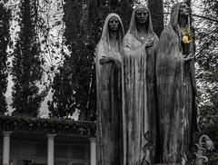 Life Eternal (Alejandro Horta Photo) Tags: cementerio dead death life canon medellin medallo colombia lamedallo latinoamerica canont3i t3i shot photographer photography blackandwhite black