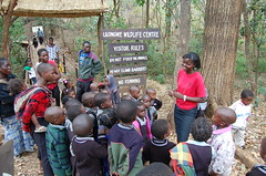 "Education at Lilongwe Wildlife Centre • <a style=""font-size:0.8em;"" href=""http://www.flickr.com/photos/152934089@N02/36903487844/"" target=""_blank"">View on Flickr</a>"