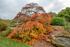 20171015-IMGP0854 (rob mulf) Tags: nymans landscapes pentax westsussex greatbritian england outdoors nature