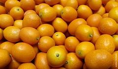 Segunda-light (sonia furtado) Tags: segundalight light fruta laranja kinkan soniafurtado