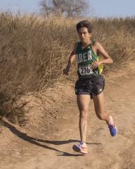 OC Champ 2017_59 (Sharpshooter Alex) Tags: breaolindaboyscrosscountry runners runner running outdoor highschoolsport 2017 male athletes oak canyon park carlos perez