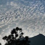 The white clouds. thumbnail