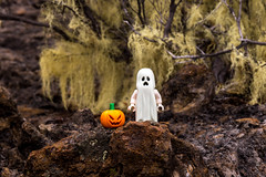 Spooky Halloween (Ballou34) Tags: 2017 7dmark2 7dmarkii 7d2 7dii afol ballou34 canon canon7dmarkii canon7dii eos eos7dmarkii eos7d2 eos7dii flickr lego legographer legography minifigures photography stuckinplastic toy toyphotography toys saintpaul réunion re stuck in plastic ghost halloween pumpkin spooky tree
