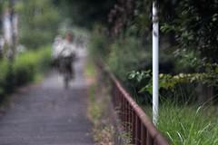_DSC4609 (kymarto) Tags: bokeh bokehlicious bokehphotography dof depthoffield sony sonyphotography sonya7r2 oldlens vintagelens dallmeyersupersixanastigmat bicycle japan