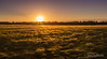 End of the Day (JDS-photo) Tags: corn sunset norfolksunset norfolk summer peace countryside landscapephotography landscape lightroom canoneos6d canonef1740mmf4lusm