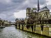 dscn1582 lr Notre Dame