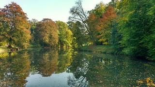 Herfstkleuren / fall colours in the park
