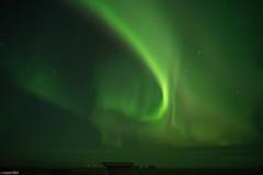 Aurora Over Eldhraun Lava Field - Iceland (Toine B.) Tags: aurora borealis aurore boreale northernlight northern lights night sky nuit ciel stars etoiles astro astrophotography