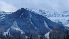 Fernie Alpine B.C. (Mr. Happy Face - Peace :)) Tags: ngc ski fernie bc skihill wintersports downhill rockies naturelover htmt trees art2017