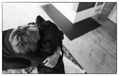 Love & Affection (Eline Lyng) Tags: dog canine rottweiler animal portrait people dogowner affection love animalportrait bw monochrome monochrom blackandwhite leica q leicaq 28mm summilux28mmf17 bokeh dof littledoglaughednoiret