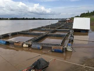 Fish farms in the Mekong at Ban Hat Kham 2