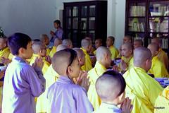 Vietnam-Hue:At Thien Mu Pagoda V. (roxykon) Tags: vietnam indochina seasia hue buddhism p pentaxk5 tamron18250mm